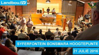 Syferfontein Bonsmara 17de Produksieveiling 2016 Hoogtepunte
